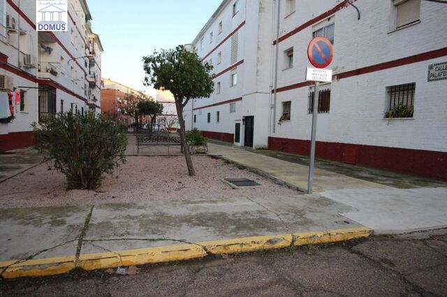 MONTIJO - DOMUS 02655 - foto 4