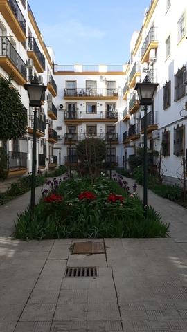 CONSTRUCCIÓN DE EDIFICIOS ( OBRA NUEVA) - foto 2
