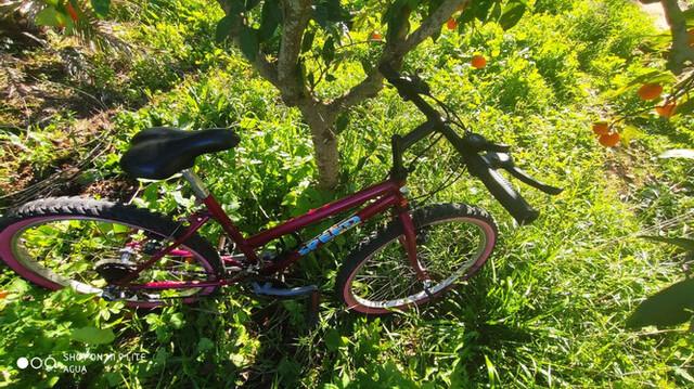 Bicicleta De 24 Pulgadas