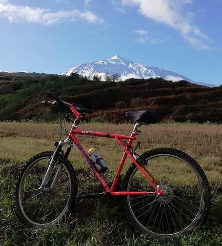 Bici De Montaña,  Talla L Llanta 26