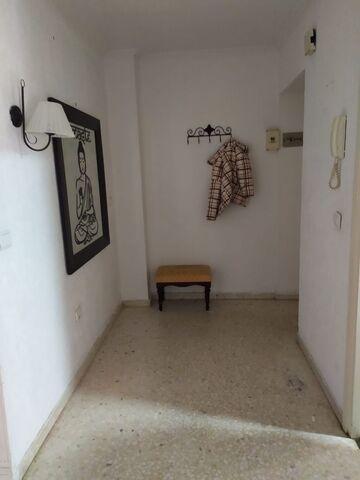 PINO MONTANO - LOS CORRALES - foto 5