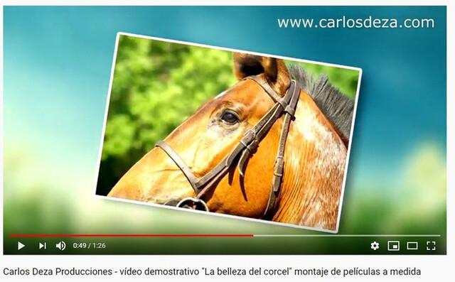 MONTAJE DE VÍDEOS ANIMADOS CON FOTOS - foto 2