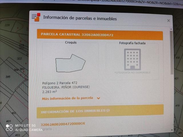 N 525  CÓDIGO POSTAL 32137 PIÑO - foto 1