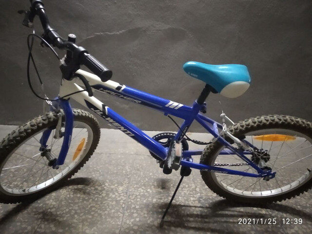 Bicicleta Niños Wenty