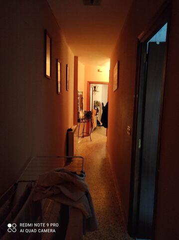 VILLANUEVA DE LA VERA - CALLE LAS PALMERAS - foto 4