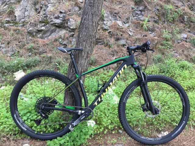 """Bici Montaña 29"""" Carbono"""