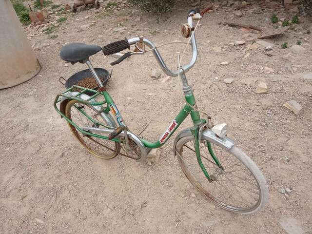 Vendo Bicicleta Clásica Bh , A Restaurar.