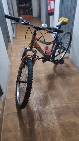 """Bici Montaña 24"""""""