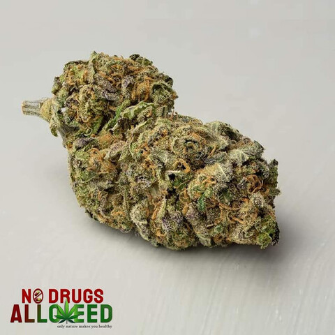 CANNABIS FLORES COGOLLOS LEGAL CBD - foto 2
