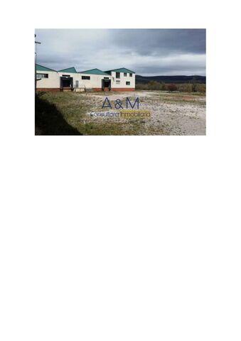 ALMARZA - foto 2