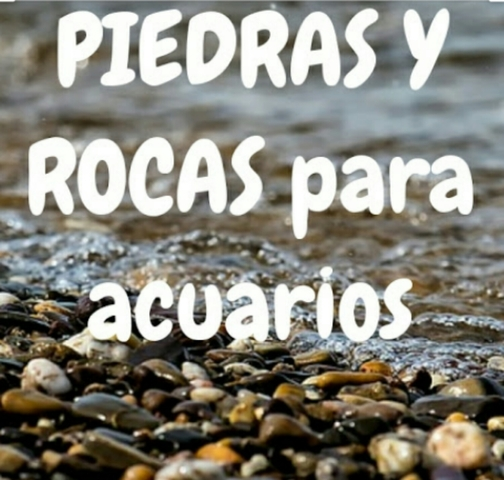 PIEDRAS DE ACUARIO - foto 1