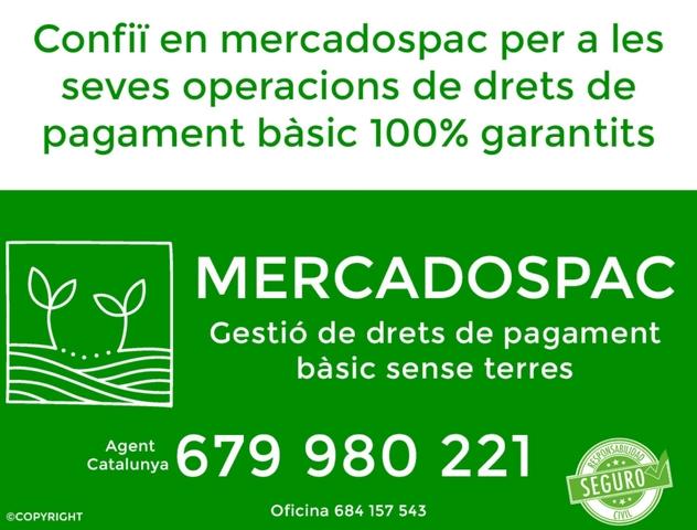 COMPRA DE DRETS PAGAMENT BÀSIC 503 - foto 1