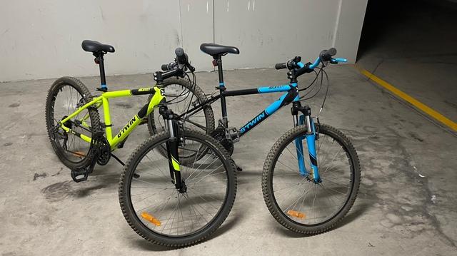 Bicicletas Rueda 24