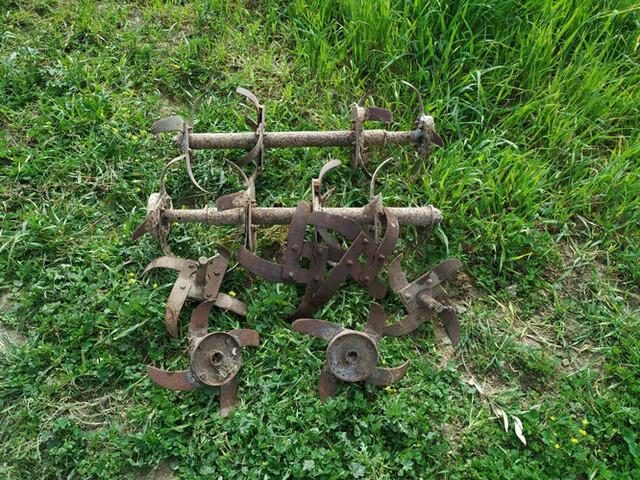 AGRIA - foto 1