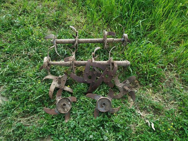 AGRIA - foto 2