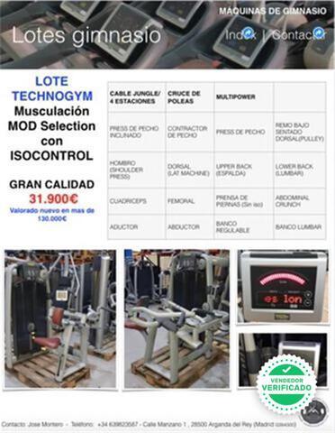 LOTE GIMNASIO TECHNOGYM SELECTION ISOCON - foto 1