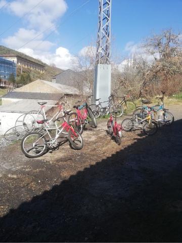 Bicicletas Clásicas .