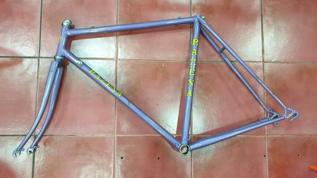 Cuadro Bicicleta Ciclista  Zeus