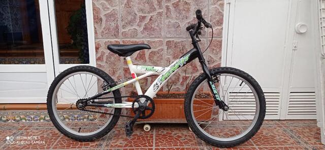 "Bicicleta Niño De 20"""