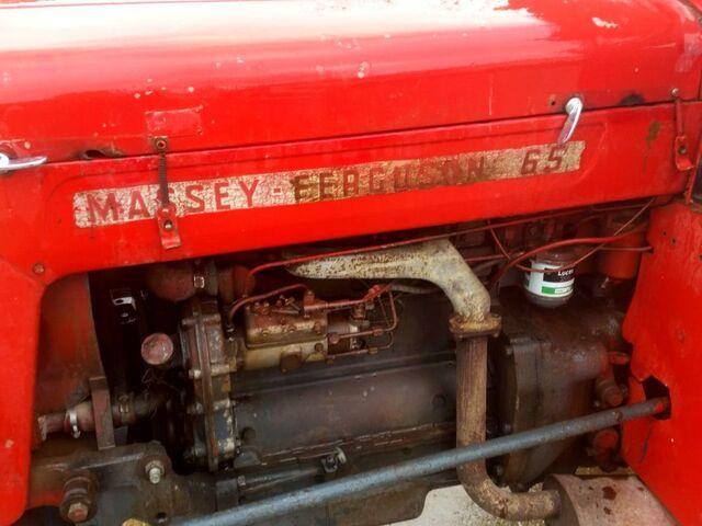 MASSEY FERGUSON - 65 MK1 - foto 3