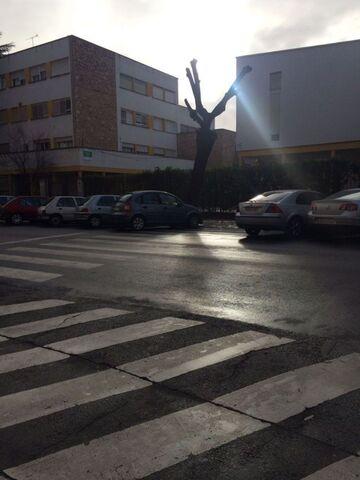 CENTRO - CASCO ANTIGUO - foto 3