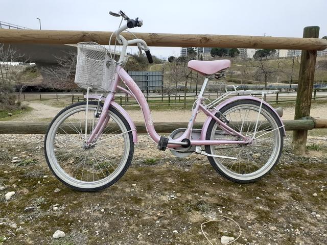Bicicleta Paseo Niñ@S