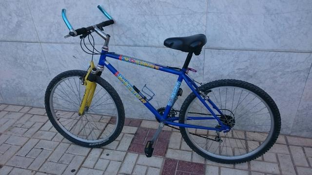 Bicicleta Adulto 26