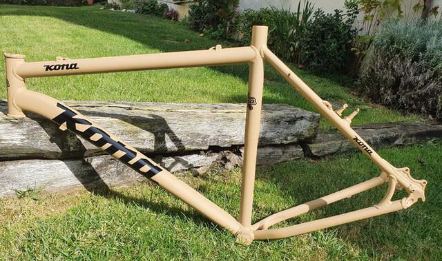 Bicicleta Electric Con Motor Bafang 500W