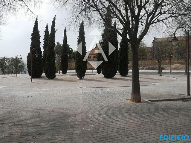 AV.  DE LA CONSTITUCIÓN - ANTIGUA - foto 2