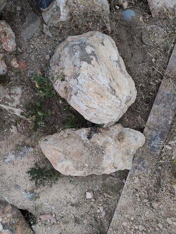 Piedra Escollera