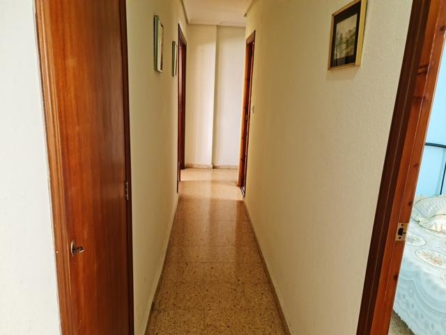 SEGARRA RIBES - foto 5