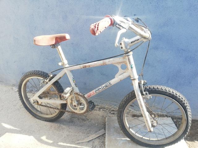 Bicicletas Bmx Panther Rabasa Derbi 16