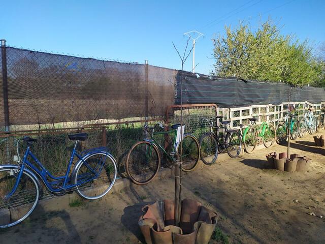 Se Venden Bicicletas Antiguas
