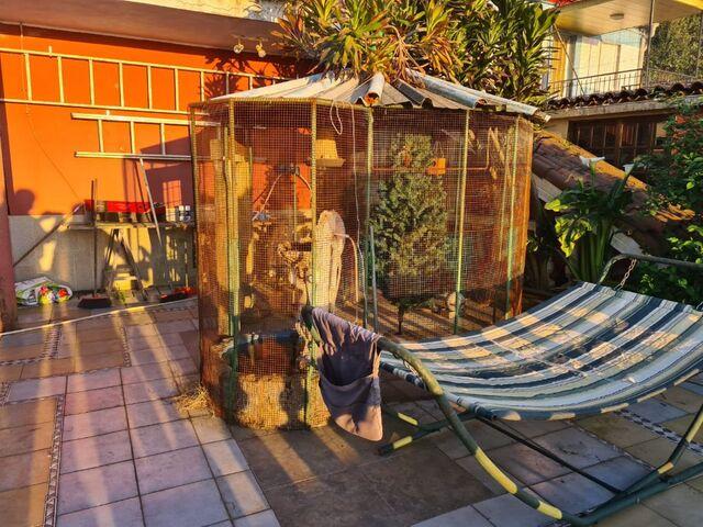 CASA 3 PLANTAS FINCA 300 M2.  VISTAS MAR - foto 6