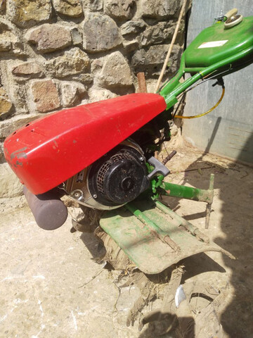 SE VENDE MOTOAZADA AGRIA 3000 - foto 2