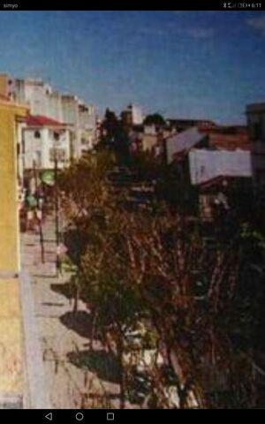 ALAMEDA CAPUCHINOS - SAN JUAN BOSCO - foto 9