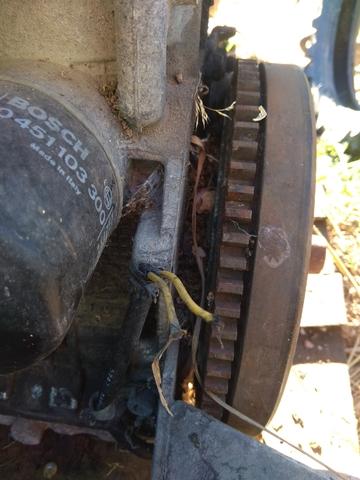 MOTOR LOMBARDINI 502 - foto 3