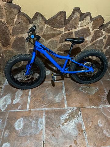 Bicicleta De Ruedas Gordas