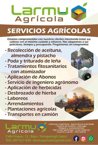SERVICIOS AGRÍCOLAS - foto 1