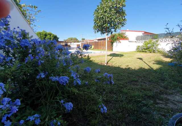 CARRETERA MARQUESADO - CAMINO ALGODONALES - foto 4