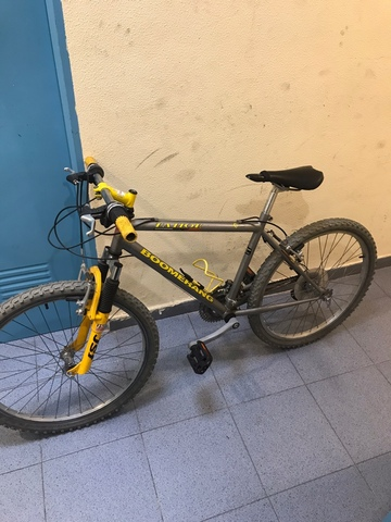 "Bicicleta Boomerang 24"""