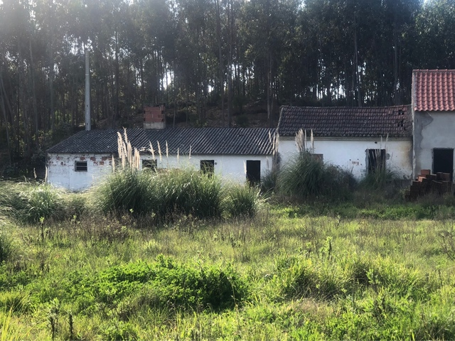 TORRES VEDRAS - MONTE REDONDO-PORTUGAL - foto 2