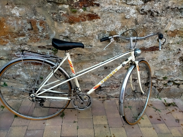 Bicicleta Torrot Universal