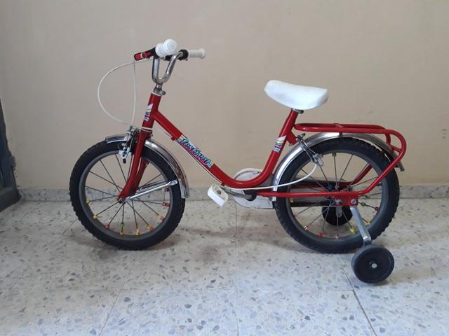 Bicicleta 16 Pulgadas Muy Buen Estado