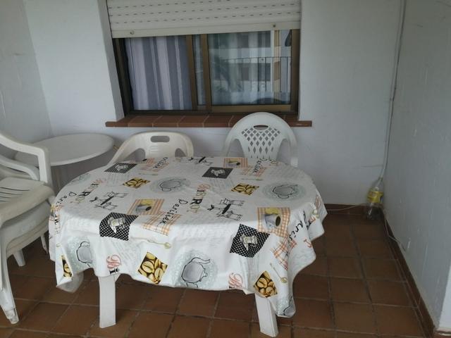 FINCA DEL MORO - LOS GIRASOLES - foto 6
