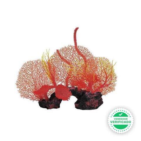 Conjunto Gorgonias De Ica