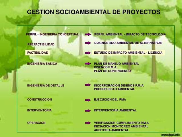 PROYECTOS Y GESTIONES AMBIENTALES.  - foto 3