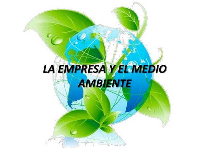 PROYECTOS Y GESTIONES AMBIENTALES.  - foto 9