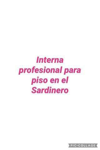 SE BUSCA INTERNA PROFESIONAL EN EL SARDI - foto 1