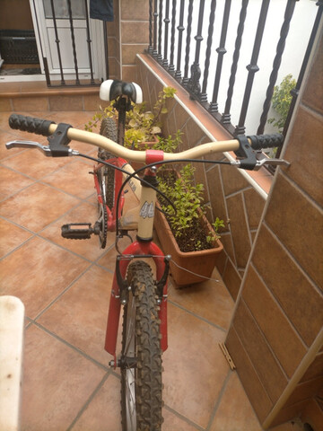 "Bicicleta De Niño 20"""